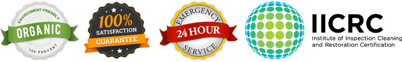 carpet cleaning 24hour services